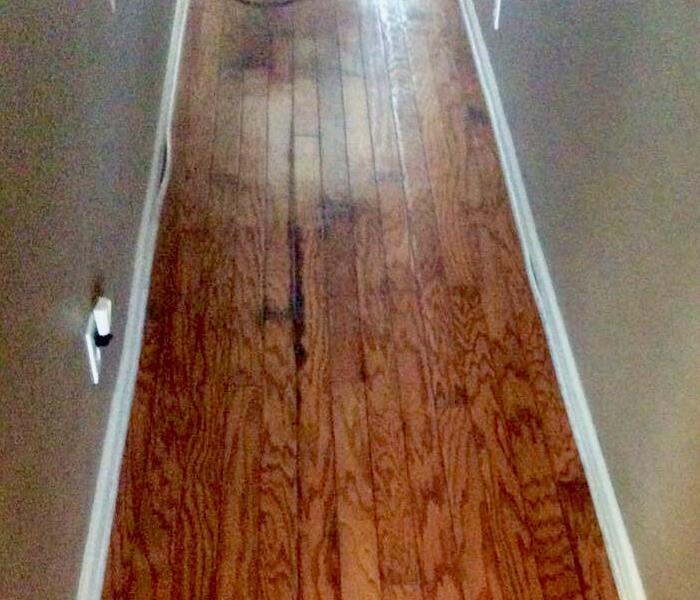 Hardwood Water Damage Before
