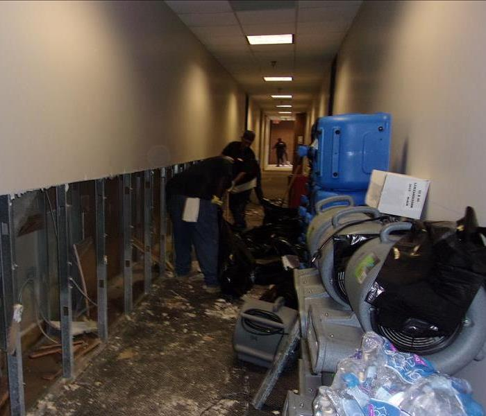 Commercial Mold Remediation Wall Repair