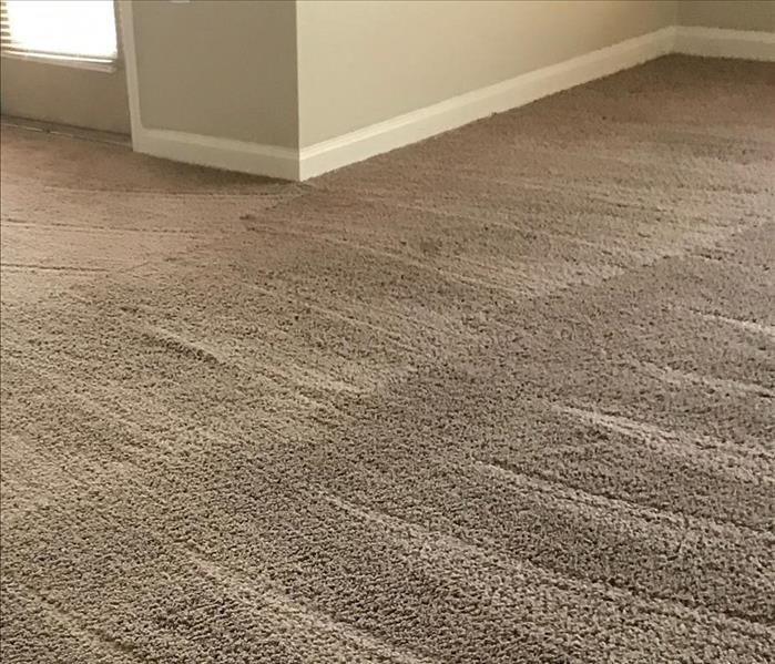 Why SERVPRO Why Have Your Carpets Cleaned by a Professional